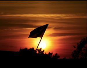 susnetflag1